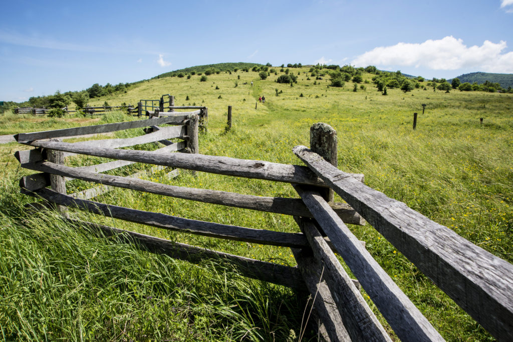 A split-rail fence lining a green pasture.