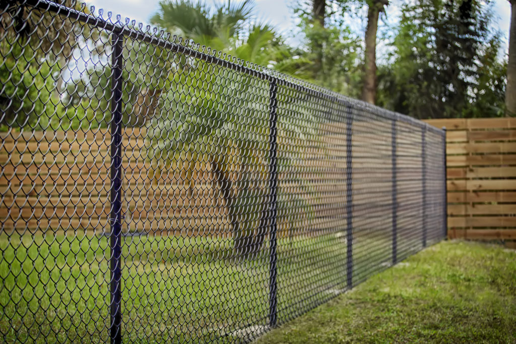A chain-link fence can be used to divide two adjacent yards.
