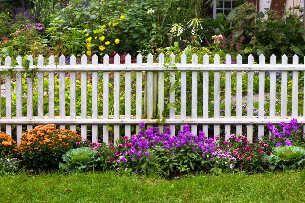 A white picket fence lining a yard that's decorated with colorful flowers.