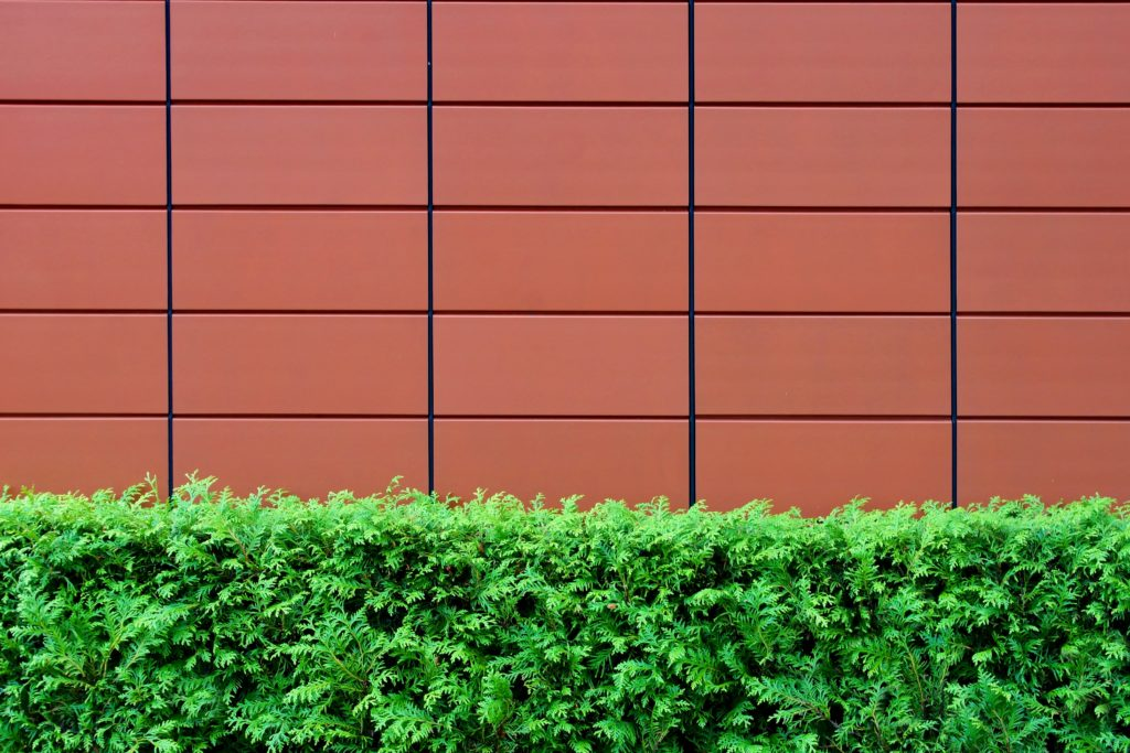 A red solid tiled wall lining a yard with a hedge near the bottom.
